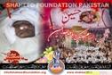 Shaheed Mohsin Raza