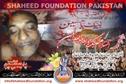 Shaheed Dr. Ameer Mehdi Zaidi