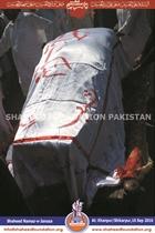 Shaheed Mohammad Rafique