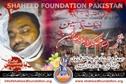 Shaheed Adeel Abbas