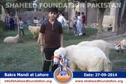 SFP Bakra Mandi Lahore 2014
