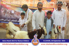 SFP Bakra Mandi D.I. Khan 2015