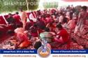 Karachi: Annual Picnic for Khanwada-e-Shohada-e-Millat-e-Jaffaria Pakistan